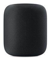 HomePod Streaming Lautsprecher WLAN Bluetooth AirPlay2 Siri Space Grau Recertified