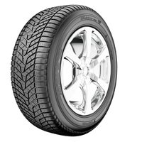 BluEarth-Winter (V905) ( 255/65 R16 109H BluEarth )